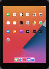 Apple iPad (8th Generation)